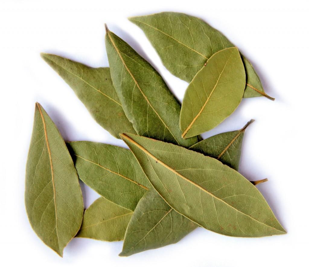 Frunze de dafin