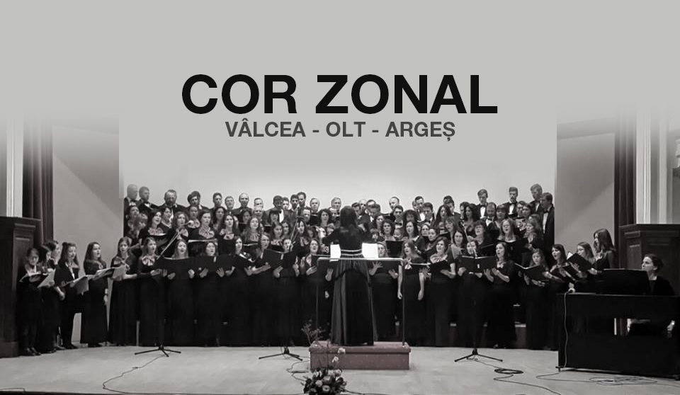 cor_zonal_judete